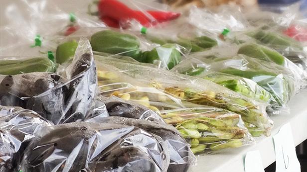 作業員(野菜の選果、袋詰め)